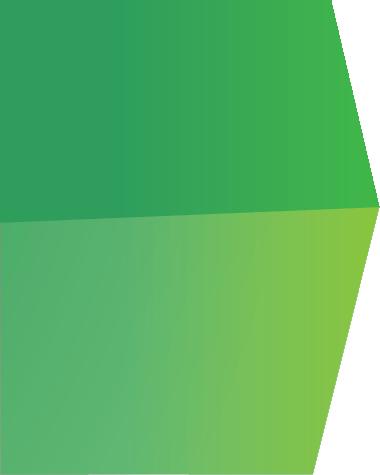 barra verde